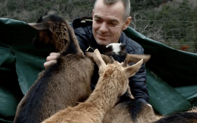 Le chef David Faure rencontre les chèvres de Serge Mariotto